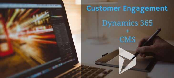 Dynamics 365 + Content Management System